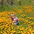 Katie In The Poppies