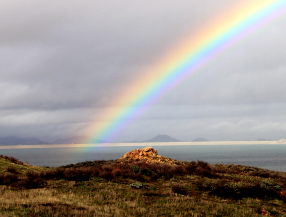 [Image: rainbow-2.jpg]