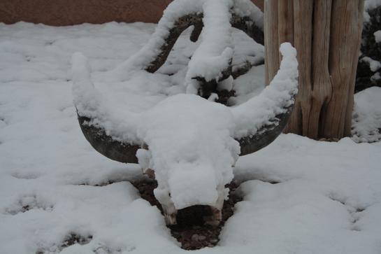 Az_snow